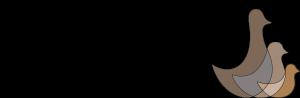 3B_logo